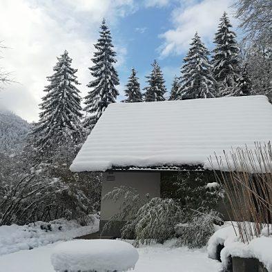 winter atrium